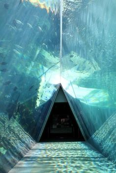 Aquamarine Fukushima