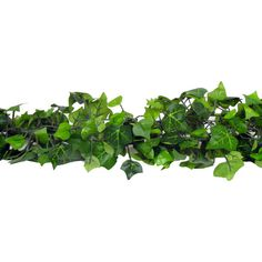 Get Mini Green English Ivy Chain Garland online or find other Garlands products from HobbyLobby.com