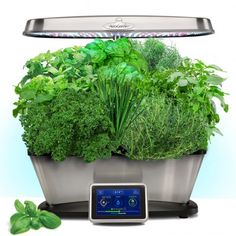 Having fresh herbs at your fingertips while preparing delicious dishes is easy with the AeroGarden Miracle-Gro 9 Pod Gourmet Herbs Seed Kit . This gourmet. Backyard Aquaponics, Hydroponic Gardening, Herb Gardening, Organic Gardening, Indoor Gardening, Indoor Plants, Pallet Gardening, Garden Pallet, Gardening Vegetables