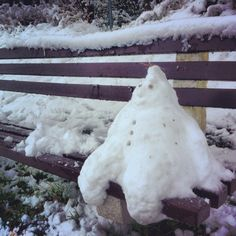 Benchamin. The snowman who lives on a bench.