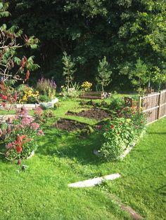 staketenzaun - kastanienzaun - seite 1 - gartengestaltung - mein, Gartengestaltung