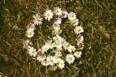 I <3 Daisies and a Peace/Love/Hippy Styles!
