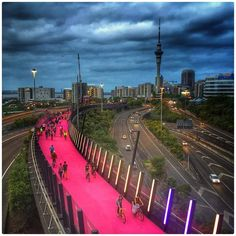 Lightpath Auckland Photo: Phil Walter