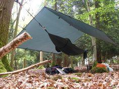 Welcome to Living Wilderness Bushcraft School