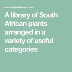 A library of South African plants arranged in a variety of useful categories African Plants, Acacia, Bonsai, String Garden