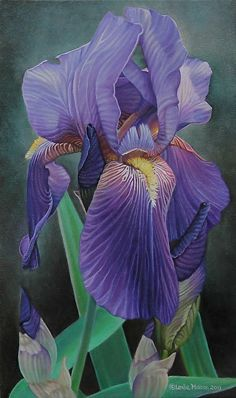 Leslie Macon — Heirloom Iris (326x550)