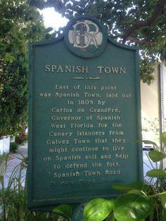 Fleur-de-Life: Things to do in Baton Rouge: Spanishtown Walking Tour