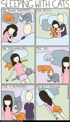sleeping with cats. Random but funny. I could make one of these about our dogs too!