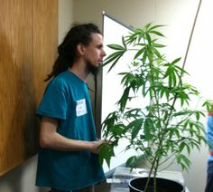 We just lowered prices on our Aquaponics Marijuana Growing Class. Learn more at  http://www.theaquaponicstore.com/Aquaponics-Marijuana-Growing-Course-p/iwsas017-cc.htm