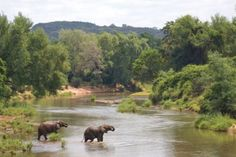 Luvuvhu River, Kruger National Park
