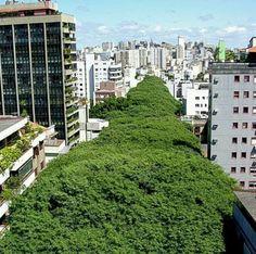 Porto Alegre Brasil