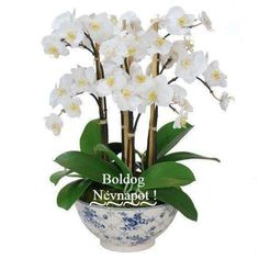 Points You Should Know Prior To Obtaining Bouquets Faux Orchid In Rose Trellis Bowl Indoor Orchids, Artificial Orchids, Orchid Plants, Ikebana, Orchid Flower Arrangements, Rose Trellis, Faux Plants, Faux Flowers, Amazing Flowers