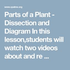 Parts of a Plant - Dissection and Diagram In this lesson,students will watch two videos about and re ...