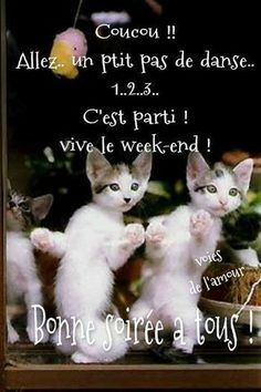 Bon Weekend, French Quotes, Bible, Messages, Gifs, Facebook, Frases, Good Night, Laughing Quotes