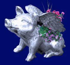 Pig- Flying Pig Planter