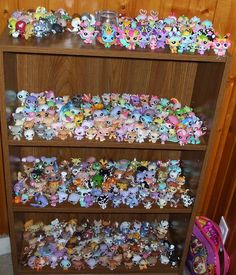 Littlest Pet Shop Shelf Lps Pets, Baby Doll Accessories, Wedding Albums, Little Pet Shop, Short Hair Cats, Toy Collector, Mini Things, Displaying Collections, Precious Moments