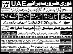 Foreman Mason Steel Fixer Jobs in UAE
