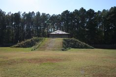 Town Creek Indian Mound in Mt. Gilead is an archaeological phenomenon. The site preserves a historical ceremonial mound built by the Pee Dee Indians. A national historic landmark. Very cool place to check out!