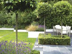 Beton Stützmauer Rasen englischer Garten Idee