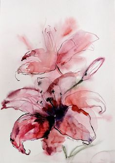 Watercolor lily - original painting of flowers - pink lilies. A unique gift for wedding, for birthday. Floral wall art for home. Water color Watercolor lily – original painting of flowers – pink lilies. A unique gift for wedding, for bi Watercolor And Ink, Watercolour Painting, Watercolor Flowers, Painting Flowers, Drawing Flowers, Lily Painting, Watercolor Tattoos, Watercolor Portraits, Watercolor Landscape