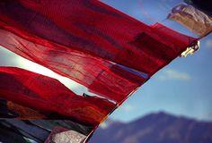 Tibetan Prayer Flags in India