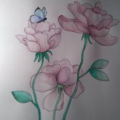*Grafika >róże< wykonana akwarelami*