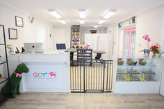 Dog Grooming Shop, Dog Grooming Salons, Poodle Grooming, Dog Grooming Business, Dog Spa, Dog Hotel, Dog Rooms, Pet Boutique, Salon Services