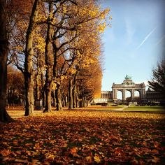 From the #Cinquantenaire park we wish you a great morning in #Brussels pic by @emmi_suo. Use the #visitbrussels with your pics http://instagram.com/visitbrussels & join our contest The Pic of the Month & get a meal for 2 in http://www.espritdesel.be check our contest conditions & good luck!! ;) http://visitbrussels.be/bitc/BE_en/content/30415/competition-terms-and-conditions.do