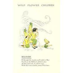 Wild Flower Children c1918 Bellwort Canvas Art - Janet Laura Scott (18 x 24)