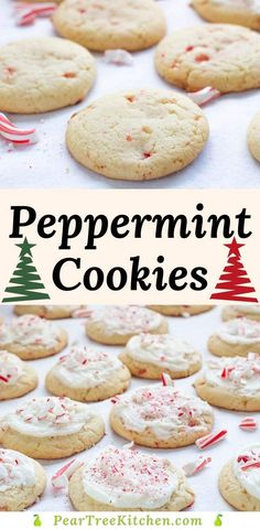 Soft sugar cookies studded with peppermint pieces and topped with peppermint buttercream and crushed candy canes are perfect for cookie trays and Santa treats. Bakery Sugar Cookies Recipe, Santa Cookie Recipe, Chewy Sugar Cookie Recipe, Vegan Sugar Cookies, Chocolate Sugar Cookies, Soft Sugar Cookies, Almond Cookies, Santa Cookies, Xmas Cookies