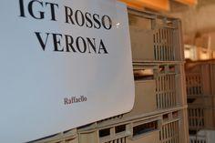 Raffaello 2014 grapes still in raising! www.AmaroneValpolicella.org