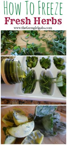 Freezing fresh herbs in olive oil or water is a perfect way to add fresh flavor to your recipes, soups or dishes all year long.