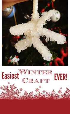 The easiest winter/Christmas/snow day craft EVER! Craft Activities For Kids, Easy Crafts, Crafts For Kids, Borax Snowflakes, Winter Christmas, Christmas Ornaments, Winter Craft, Library Programs, Grandkids