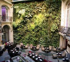 Le jardin verticale du Pershing Hall à Paris  One of my fab restaurants in Paris