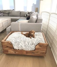 puppy room design idea 11 ~ Home Design Ideas Animal Room, Dog Bedroom, Bedroom Decor, Bedroom Ideas, Puppy Room, Diy Dog Bed, Cute Dog Beds, Best Dog Beds, Diy Bed