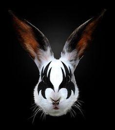 """KISS Of A Rabbit""""  By Artist Robert Farkas"""
