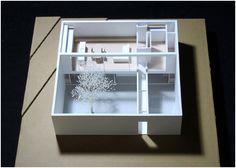 model architecture