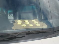 If the inside of your car reaches at least 160 degrees F in the summer, you can bake cookies on your dashboard ~ Now you can have cookies without turning on a hot oven on a hot day!