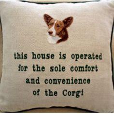Bahaha! #corgi------ours would say two Corgis!