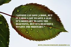 To love the ordinary The Ordinary, Natural Health, Health And Beauty, Quote Of The Day, Take That, Wisdom, Inspirational, Love, Words