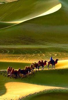 Caravan, Gobi desert, Mongolia...http://reversehomesickness.com/asia/gobi-great-weather-extremes/