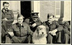 """I present the """"Old English Sheepdog"""" of Charles PICKARD, hero of the 1939-1945 war. His name MING. Whenever his master came home from mission, he was a pilot in the R.A.F., Ming awaited him on the end of the runway. It was quite surprising because no one knew the time of return, given the secret nature of the mission. But Ming, knew him and he was ready to welcome her master. Another great complicity between two friends .....  Je vous présente le""""Old English Sheepdog"""" de Charles PICKARD…"""