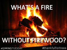 It sure would be hard to warm up to a cozy fire this winter without FIREWOOD, wouldn't it?  Help us reach our #GivingTuesday goal of $10,000 so that we can plant more trees. Why are YOU #thankfulfortrees?  Consider donating to Forest ReLeaf of Missouri on Tuesday, December 2nd.  www.moreleaf.org