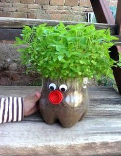 Estes vasos de jardim com garrafa pet podem até servir como presentes (Foto: Divulgação)
