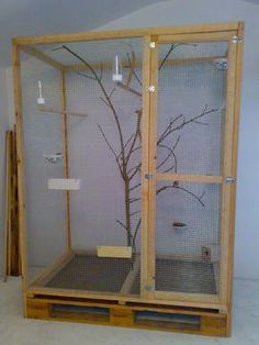 Training Your Pet Parrot Bird Cage Design, Diy Bird Cage, Cage Chinchilla, Monkey Cage, Sugar Glider Cage, Large Bird Cages, Reptile Habitat, Bird Aviary, African Grey Parrot
