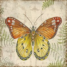 Butterfly Daydreams-c Print By Jean Plout