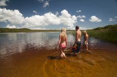 http://sunsetsafaris.weebly.com/blog/-fraser-island-an-experience-to-remember