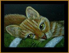 Ginger Cat 1 - NENE CYRA R. CANCEL DAUGHTER'S CAT NENE