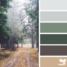 today's inspiration image for { color path } is by @djmight ... thank you, Elena, for another fresh + inspiring #SeedsColor photo share!
