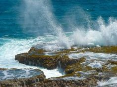 Blow holes at Little Bay on the north-east coast of Barbados. Enjoy this and beautiful views of the coastline.